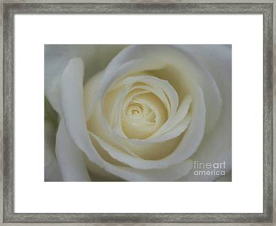 For You Framed Print by Robert Brown