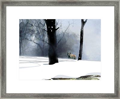 Foraging Grizzly Framed Print