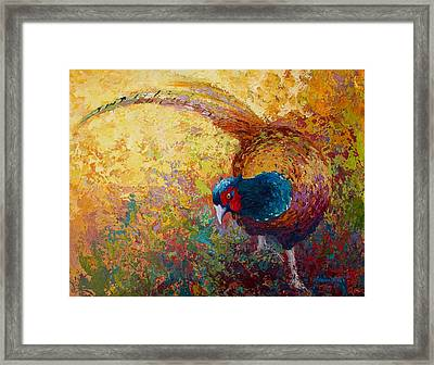 Foraging Pheasant Framed Print by Marion Rose