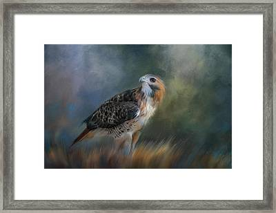 Foraging The Field Framed Print