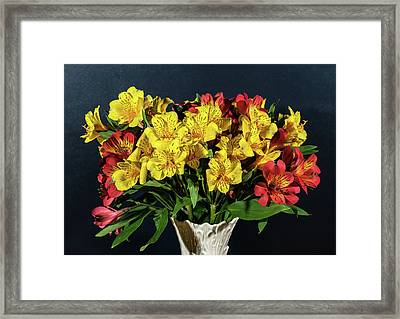 Foral Bouquet Of Red And Yellow Astomelia Framed Print