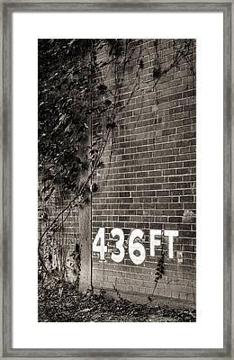 Forbes 436 - #2 Framed Print