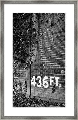 Forbes 436 Framed Print
