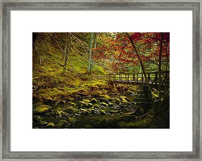 Forbidden Bridge  Framed Print by Svetlana Sewell