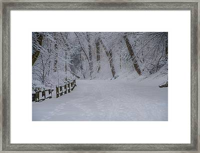 Forbidden Drive After A Snowfall Framed Print by Bill Cannon