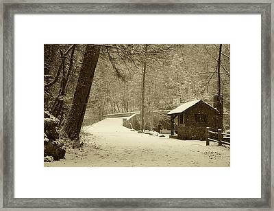 Forbidden Drive In Winter Framed Print by Bill Cannon