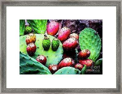 Forbidden Fruit Framed Print