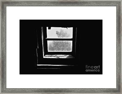 Forbidden Knowledge Framed Print by Lauren Leigh Hunter Fine Art Photography