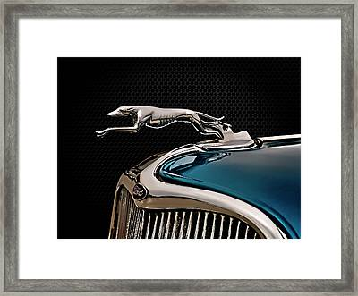 Ford Blue Dog Framed Print by Douglas Pittman