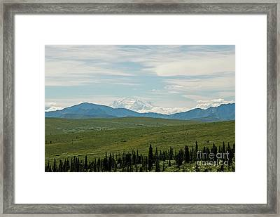 Foreground And Mountain Framed Print