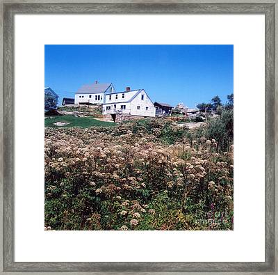Foreground Framed Print by Andrea Simon