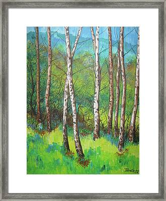 Forest 1 Framed Print