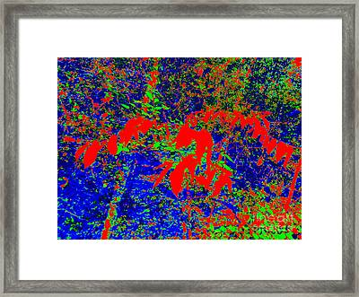 Forest Abstract Framed Print by Chuck Taylor