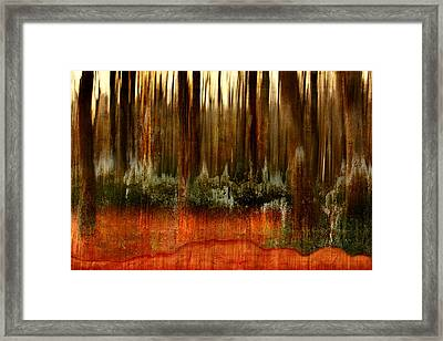Forest Abstract Framed Print by Heike Hultsch