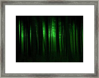Forest Abstract03 Framed Print by Svetlana Sewell