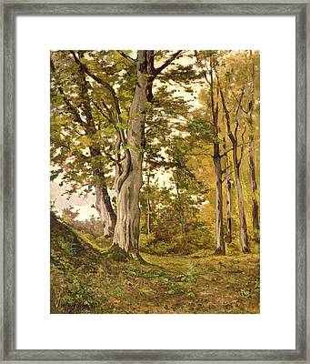 Forest At Fontainebleau Framed Print by Henri-Joseph Harpignies