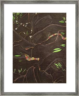 Forest At Night Framed Print