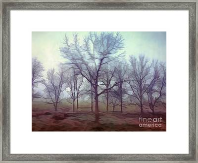 Framed Print featuring the photograph Forest Ballet by Kerri Farley