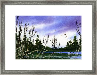 Forest Beauty Framed Print by James Williamson