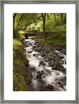 Forest Bridge - Columbia River Gorge Framed Print by John Gregg