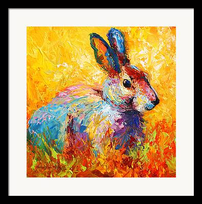 Rabbit Framed Prints