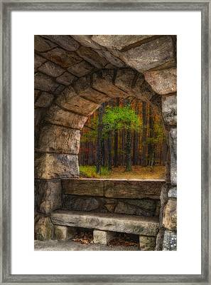 Forest Contemplation Invite Framed Print by Susan Candelario