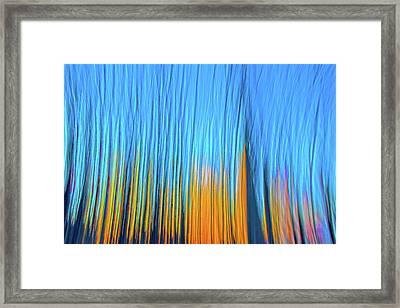 Framed Print featuring the photograph Forest Fire by Tony Beck