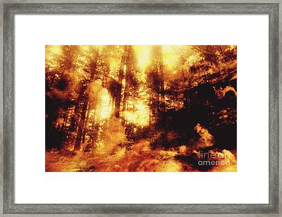 Forest Fires Framed Print