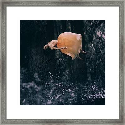 Forest Floating Framed Print by Anka Zhuravleva