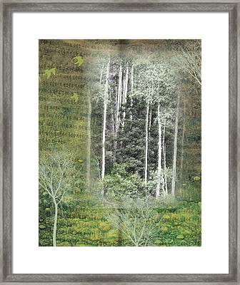 Forest For The Trees Framed Print by Nadine Berg