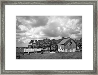 Forest For The Trees - Quilt Barn - Nebraska Framed Print by Nikolyn McDonaldFarm Scene - Barns - Nebraska - BW