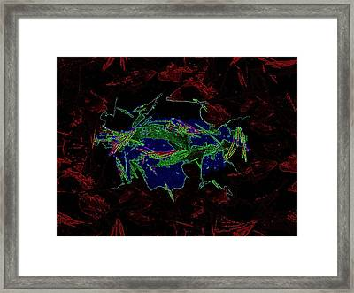 Forest For Your Thoughts Framed Print