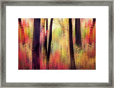 Framed Print featuring the photograph Forest Frolic by Jessica Jenney