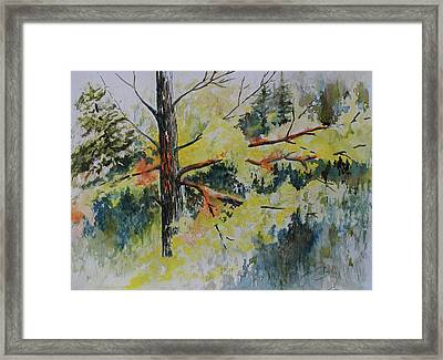 Framed Print featuring the painting Forest Giant by Joanne Smoley