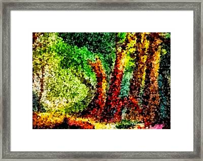 Forest Glade  Framed Print by Mario Carini