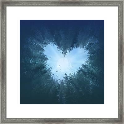 Forest Heart 2 Framed Print