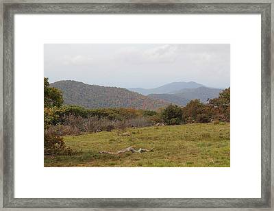 Forest Highlands Framed Print