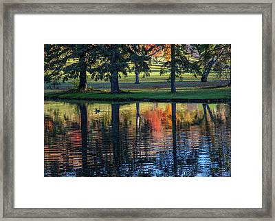 Forest Hill Reflections I Framed Print