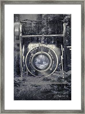 Forest Ice Exposition Framed Print by Jorgo Photography - Wall Art Gallery