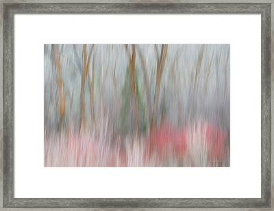 Forest Impression 3 Framed Print by Leland D Howard
