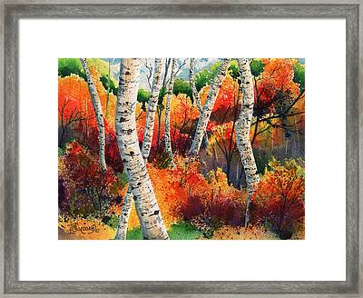 Forest In Color Framed Print by Timithy L Gordon