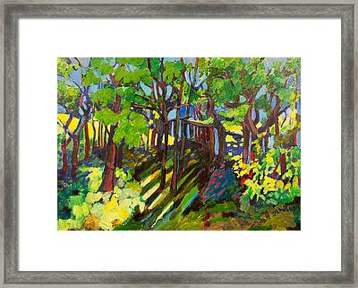 Forest In Germany Framed Print