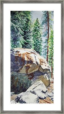 Forest Framed Print by Irina Sztukowski