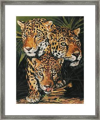Forest Jewels Framed Print by Barbara Keith
