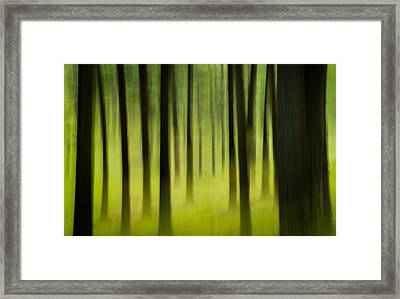 Framed Print featuring the photograph Forest by Joye Ardyn Durham