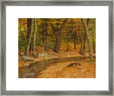 Forest Life Framed Print by Roena King