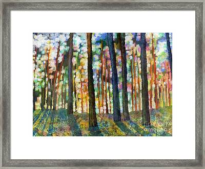 Forest Light Framed Print by Hailey E Herrera