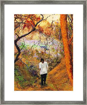 Forest Light Framed Print by Randy Sprout