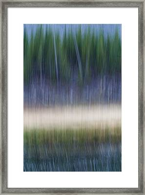 Forest Meets Lake Framed Print