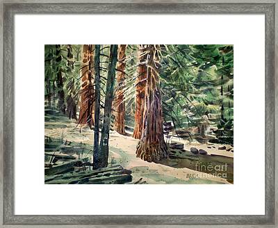 Forest Murmers Framed Print by Donald Maier